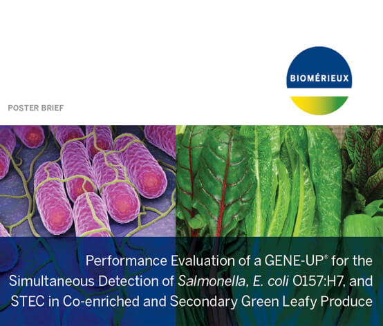 LEAFY-GREENS-PUSH-WEBSITE-GENEUP.jpg