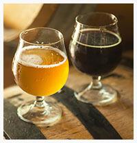 Acetic acid bacteria in beer production