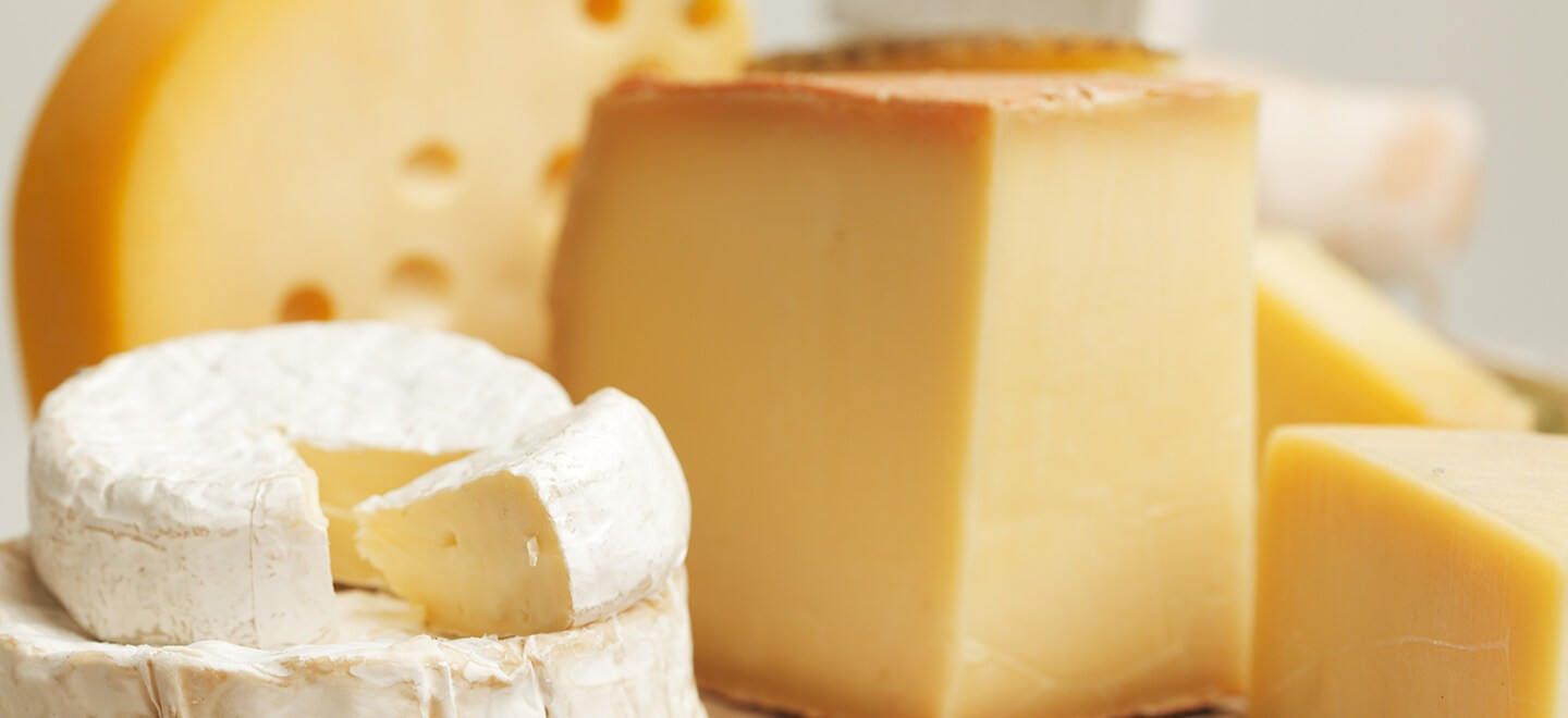 IMG BIOMERIEUX INDUSTRY DAIRY CHEESE FOOD SAFETY