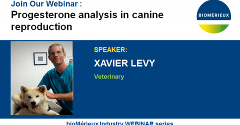 WEBINAR-PROGESTERONE-LEVY-BIOMERIEUX-VETERINARY