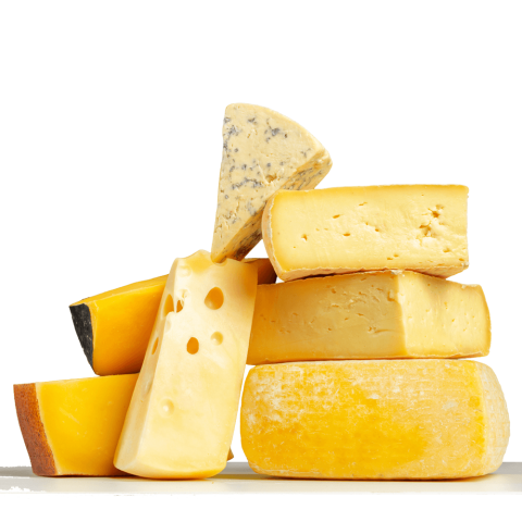 CHEESE-1000x1000.png